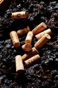 Bolla wijnhuis - Italië, Veneto - Wijn & Thijs