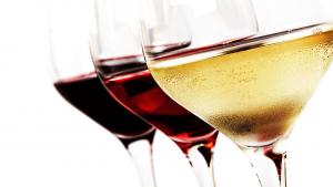 Wijnproeverijen bij Wijn & Thijs